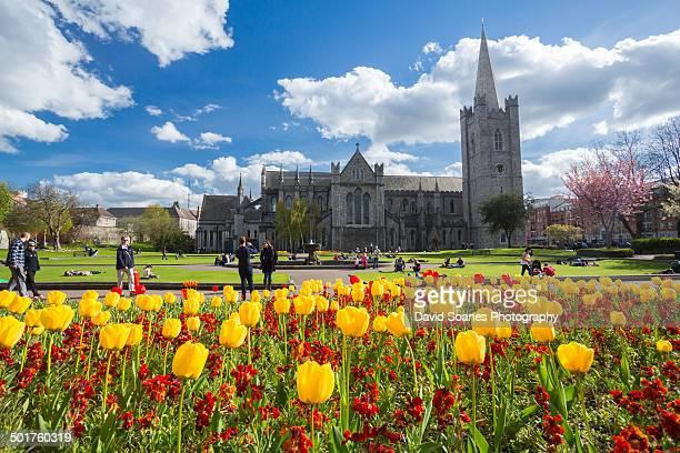 St. Patrick's Park in Dublin City
