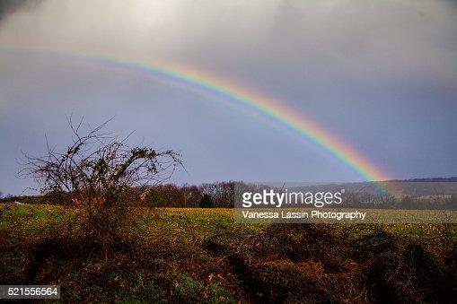 St. Patty's Day Rainbow : Stock Photo