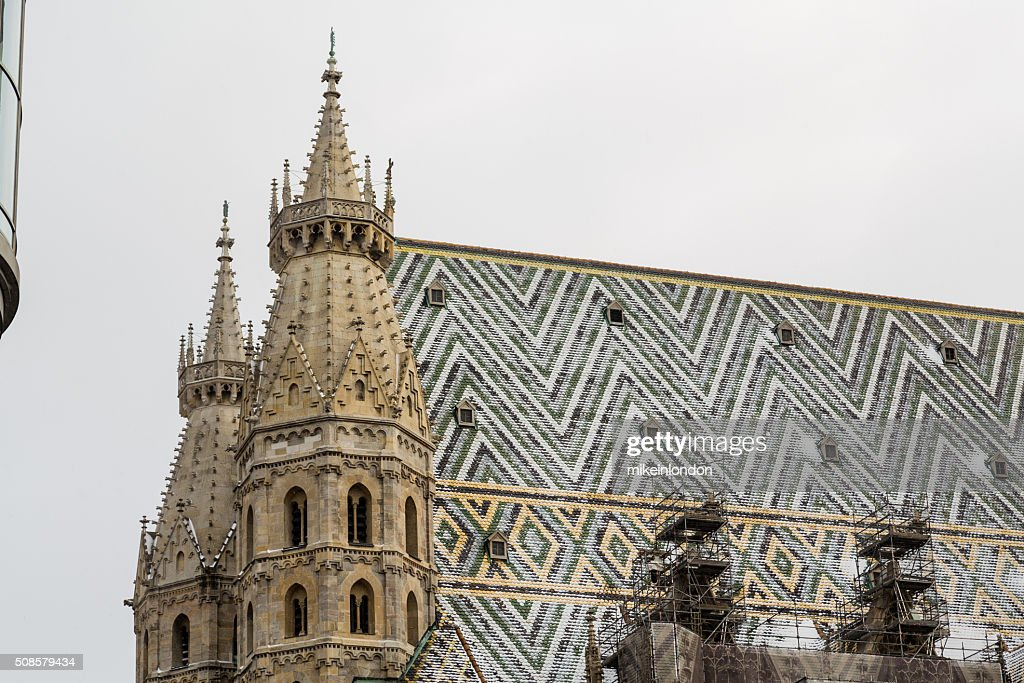 St. Stephen's-Kathedrale (Stephansdom im Winter : Stock-Foto
