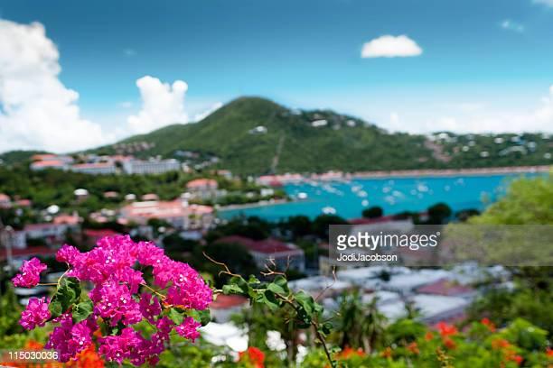 Us Virgin Islands Parasailing
