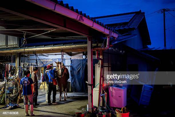 Stable hands help to prepare a horse in traditional dress in the early hours of the morning ahead of the Soma Nomaoi festival on July 25 2015 in Soma...