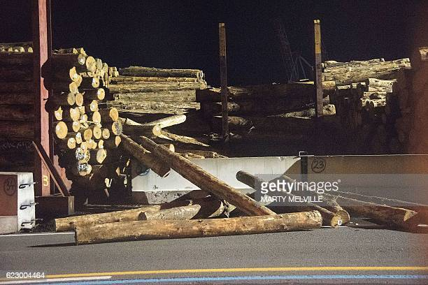 A stack of collapsed logs are seen at a wharf in Wellington early on November 14 2016 following an earthquake centred some 90 kilometres north of New...