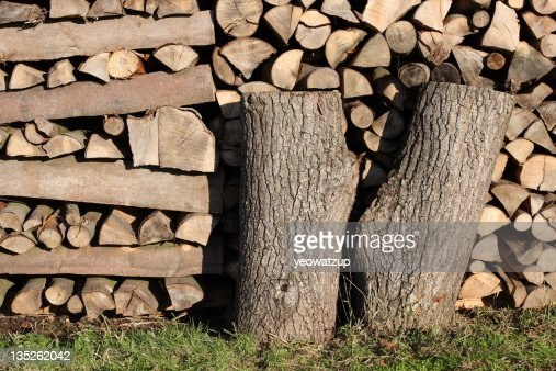 Stack of forest wood,Lindau, Germany : Stock Photo
