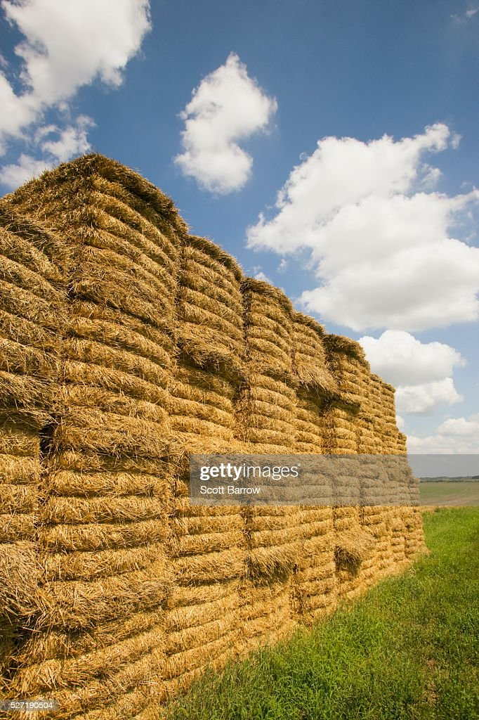 Stack of hay bales : Stock-Foto