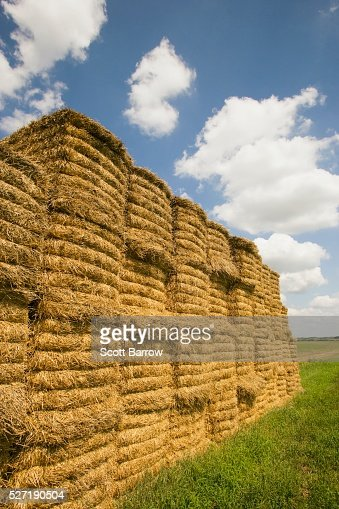 Stack of hay bales : Stock Photo