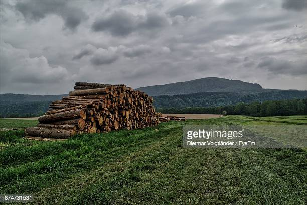 Stack Of Logs On Grassy Field Against Cloudy Sky