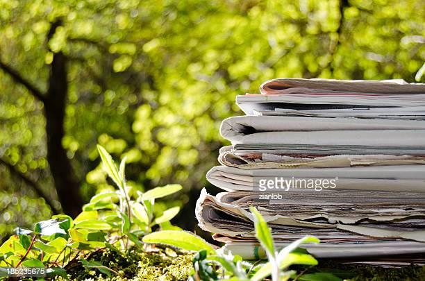 Stapel von alten Zeitungen mitten im Wald.