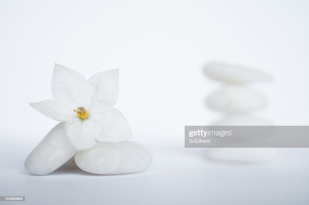 Stack of white pebbles and jasmine flower