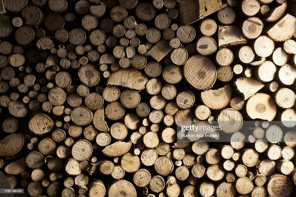 Stack of wood for fire : Stock Photo