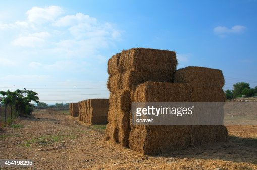 Empilhados blocos de seca feno (Imagem HDR) : Foto de stock