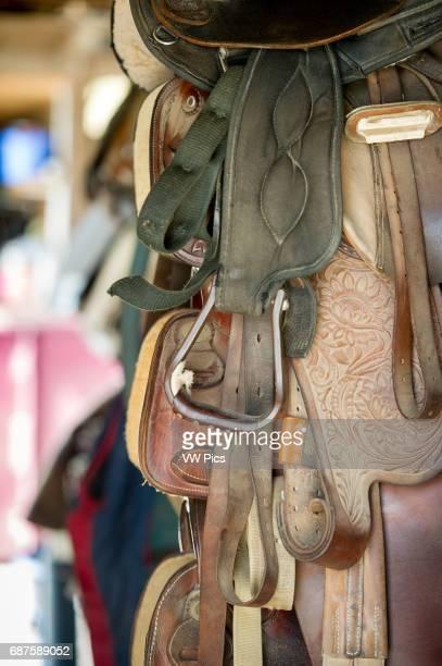 Stacked horse riding saddles in Freeland Maryland USA