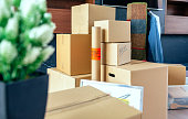 Moving with stacked boxes and plant