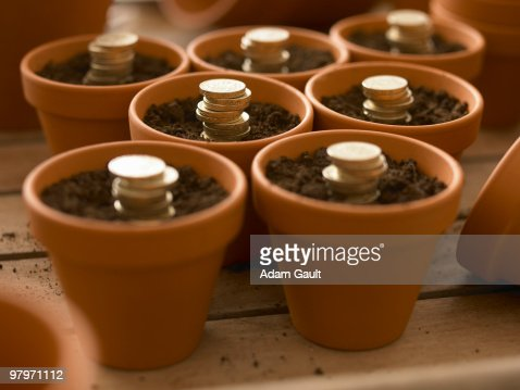 Stacks of coins growing in flowerpots : Stock Photo