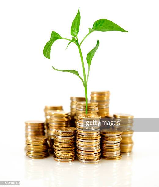 Stacks of coins with a small plant sprouting in the middle