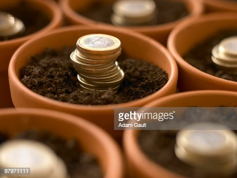 Stacks of Euro coins growing in flowerpots : Stock Photo