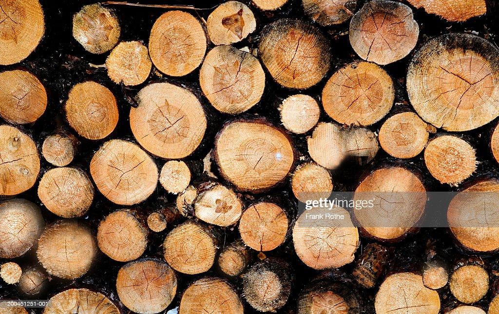 Stacks of lumber : Stock Photo