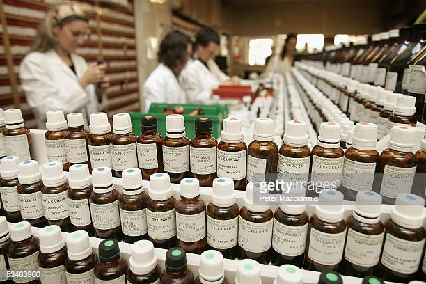 Staff at Ainsworth Pharmacy make up homeopathic remedies on August 26 2005 in London British medical journal The Lancet has attacked the use of...