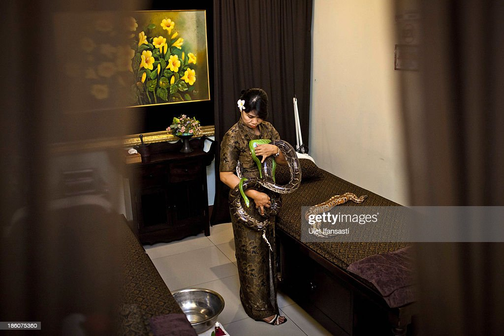 A staff holds pythons at Bali Heritage Reflexology and Spa rooms on October 27, 2013 in Jakarta, Indonesia. The snake spa offers a unique massage treatment which involves having several pythons placed on the customers body. The movement of the snakes and the adrenaline triggered by fear is said to have a positive impact on the customers metabolism.