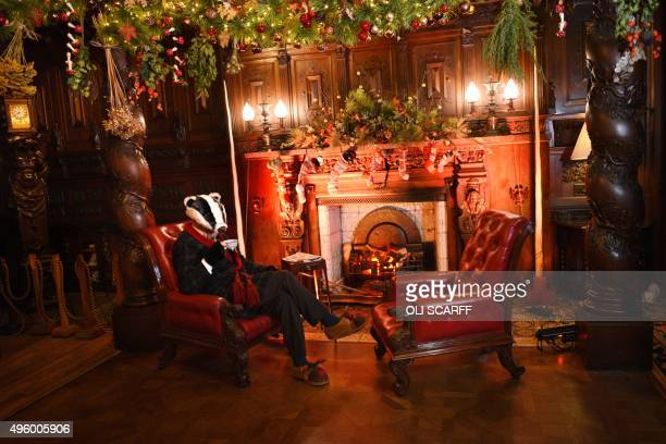 A staff member dressed as the character 'Badger' from the from the classic children's book 'The Wind in the Willows' rests in the Christmasdecorated...