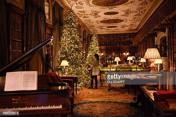 A staff member puts the finishing touches to the display of Christmas trees in the Library at Chatsworth stately home near Bakewell central England...