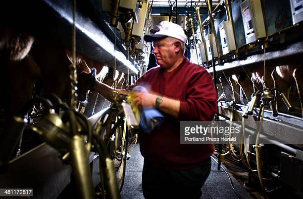 Staff Photo by Fred J Field Fri Jan 24 2003 Frank Caverly of Clinton wipes udders with iodine prior to automated milking at his 400 milking cow farm...