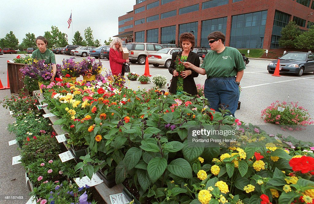 Staff Photo by Jill Brady Thu Jun 08 2000 Wanda Rounds right of Rounds' Farm out of Hollis shares her knowledge of plants with Kay Doucette of...