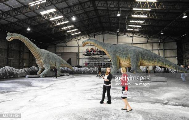 Staff with two Brachiosaurus animatronic models as they move around the set of the Walking With Dinosaurs show at Tockwith North Yorkshire