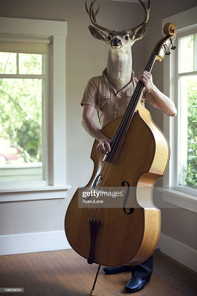 Stag Man Music Practice : Stock Photo