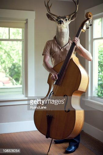 Stag Man Music Practice : Stock Photo