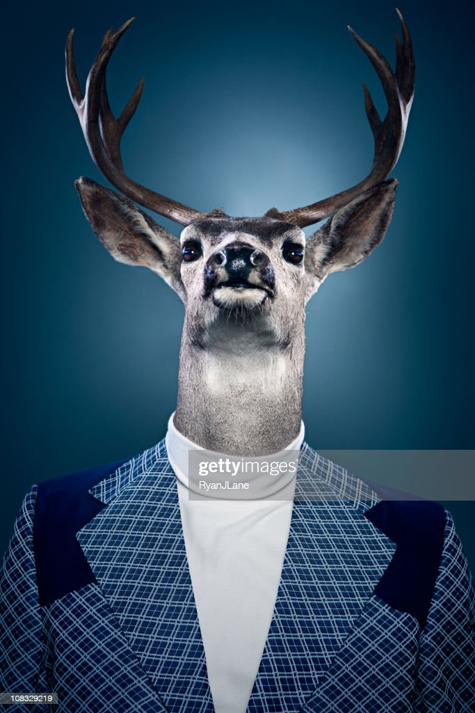 Stag Man Portrait : Stock Photo