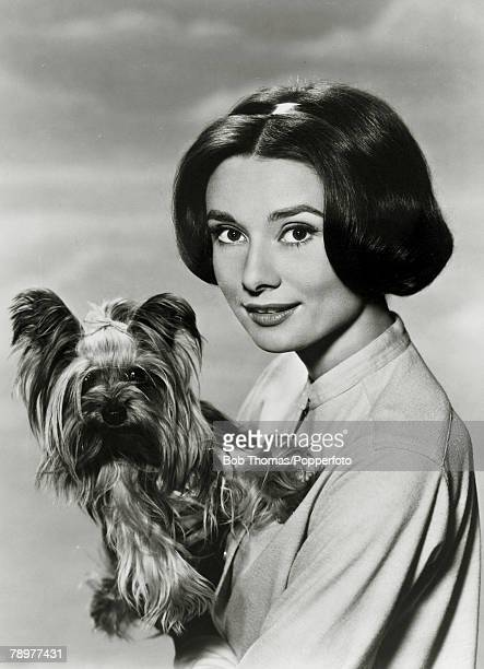 circa 1950's Actress Audrey Hepburn portrait and dog Audrey Hepburn born in Brussels a truly international star from a cosmopolitan background...