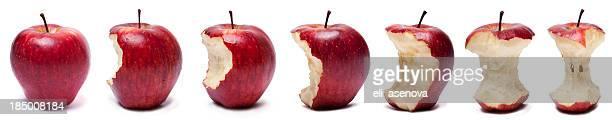 段階の赤いリンゴを食べる