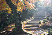 Staircase in mountain in autumn, Fukui Prefecture, Honshu, Japan