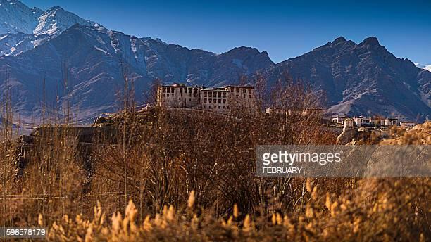Stakna monastery, Leh Ladakh