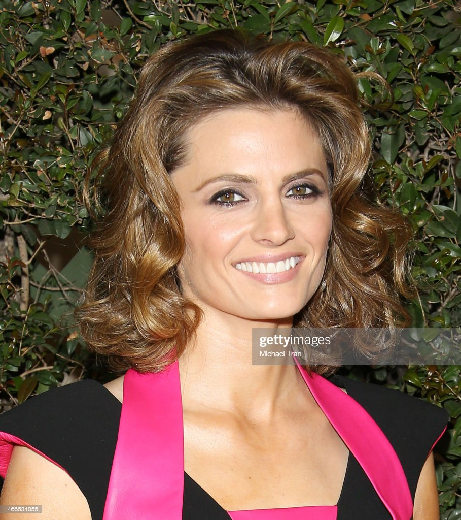 <a gi-track='captionPersonalityLinkClicked' href=/galleries/search?phrase=Stana+Katic&family=editorial&specificpeople=2081035 ng-click='$event.stopPropagation()'>Stana Katic</a> arrives at the 2014 Writers Guild Awards L.A. Ceremony held at JW Marriott Los Angeles at L.A. LIVE on February 1, 2014 in Los Angeles, California.