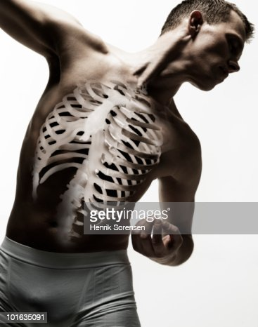 Standing male torso with skeleton visible : Stock Photo