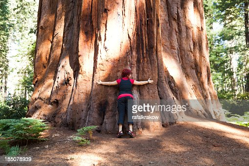Standing next to a giant tree in Sequoia National Park
