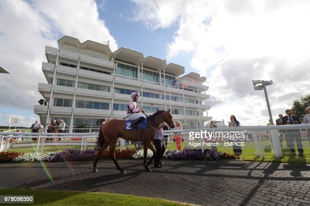 Standpoint ridden by David Kenny in the parade ring at Epsom Downs Racecourse before the Download Epsom's Android Or Iphone App Now Apprentice...