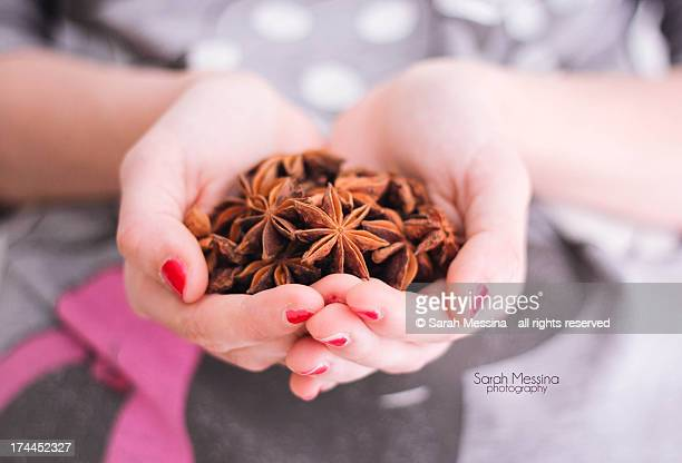 Star anise in hand