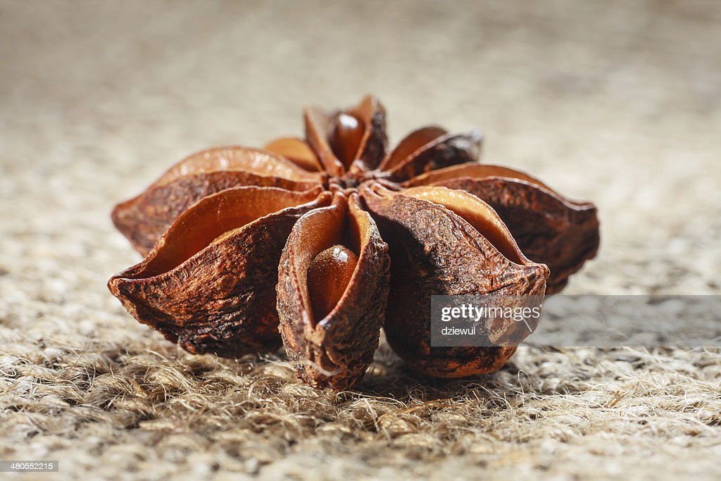 star anise on burlap background : Stock Photo
