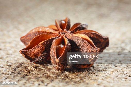 star anise on burlap background : Stock Photo