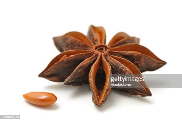 Star anise pod and seed