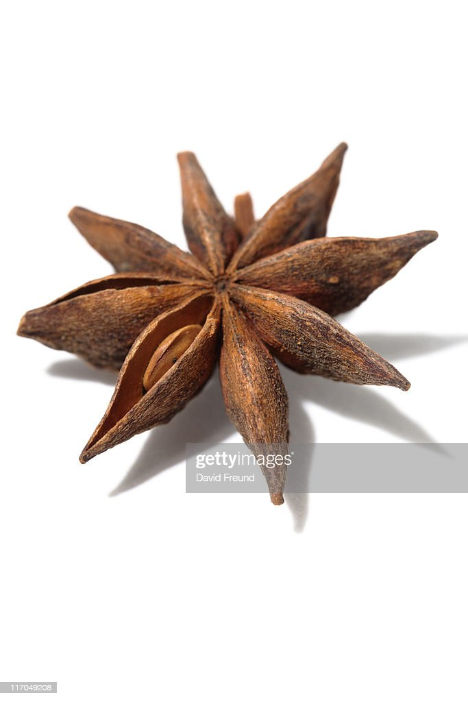 Star Anise Spice : Stock Photo