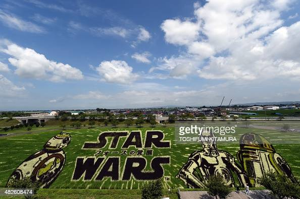 Star Wars film characters BB8 C3PO and R2D2 are displayed at rice paddies in Inakadate village in Aomori prefecture on August 1 2015 The Star Wars...