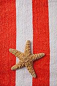 Starfish on beach towel