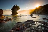 Starfish sunlight sunrise beach