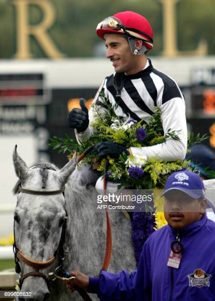 Starine heads for the winner's circle as jockey John Velazques gives the thumbsup after winning the Breeders' Cup Filly Mare Turf race 26 October...