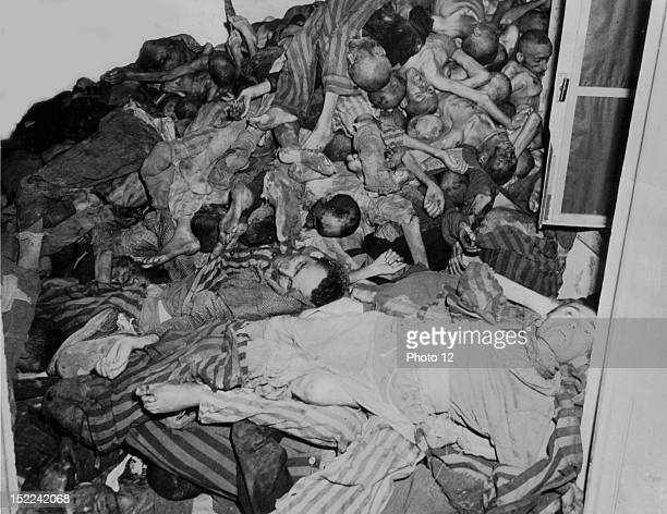 Stark evidence of Nazi brutality these dead prisoners were piled against the walls of a room awaiting cremation when troops of 42nd and 45th Infantry...