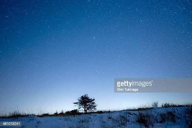 Starry heavens 14