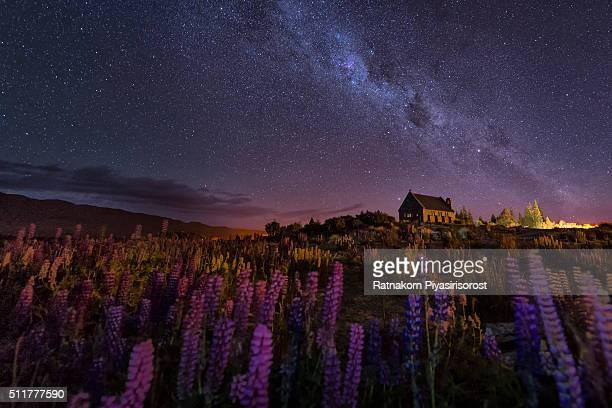Starry Night at Lake take